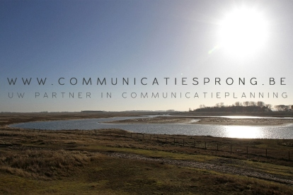 www.communicatiesprong.be